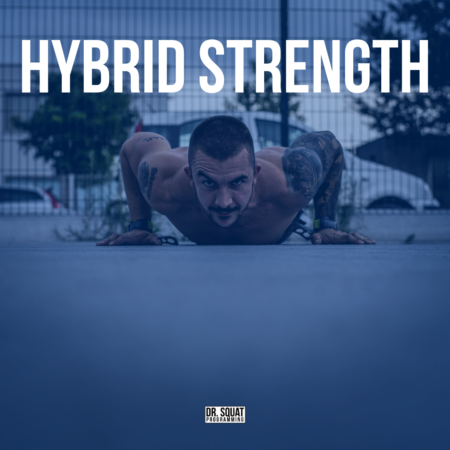 program-hybrid-strength
